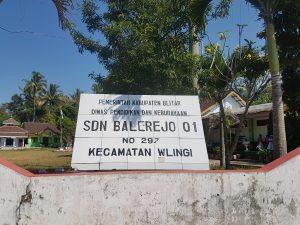 SDN Balerejo 1